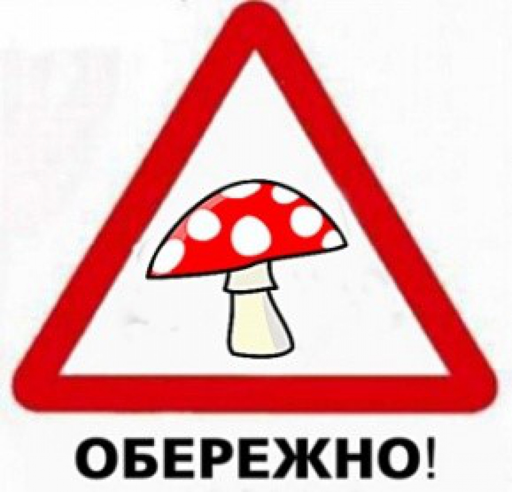 Картинки по запросу картинки отруєння грибами